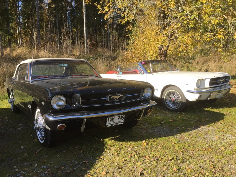 Robert Hansson Mustang Convertible 1964 ½