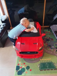 Mustangfantast 1